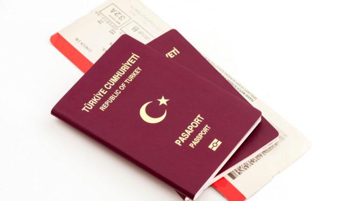 Pasaport Nedir, Çeşitleri Nelerdir?