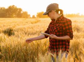 Devlet Destekli Tarım Sigortaları